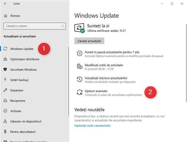 Butonul Opțiuni avansate din setările Windows Update