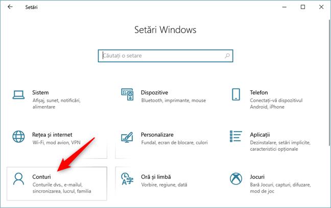 Categoria Conturi din Setările Windows 10
