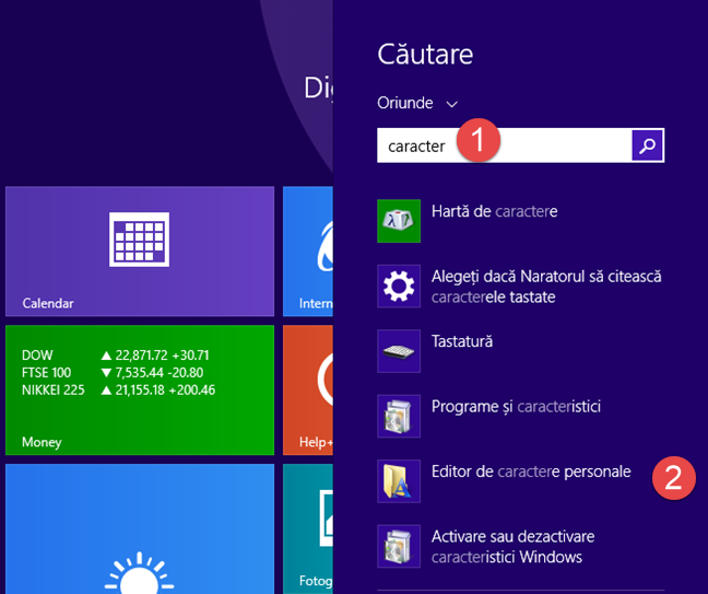 Editor Caractere Personale, Private Character Editor, Windows