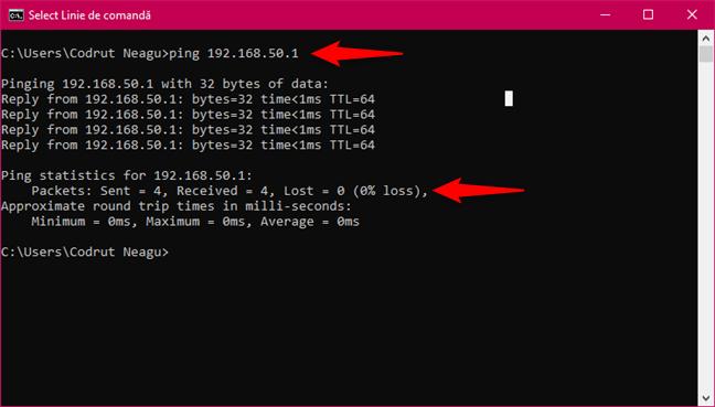 Executarea comenzii ping către router, pentru a verifica conexiunea la rețea