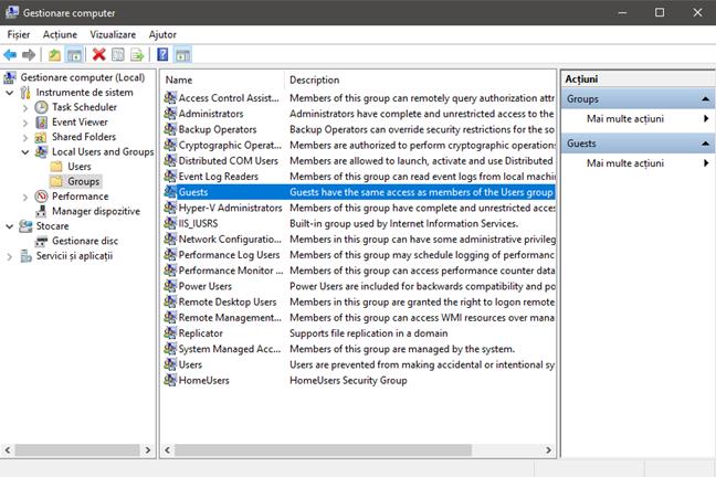Windows 10, cont, Guest, utilizator