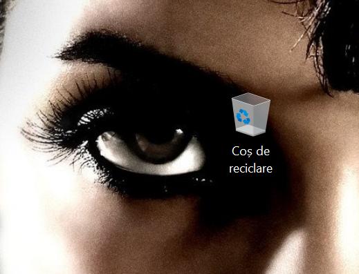 Readu Coșul de reciclare pe desktop