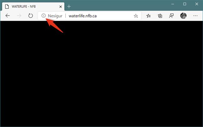Butonul Vedeți informațiile site-ului din Noul Microsoft Edge