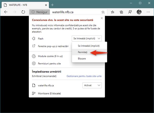Opțiunea de a permite redarea conținutului Flash pe un site web