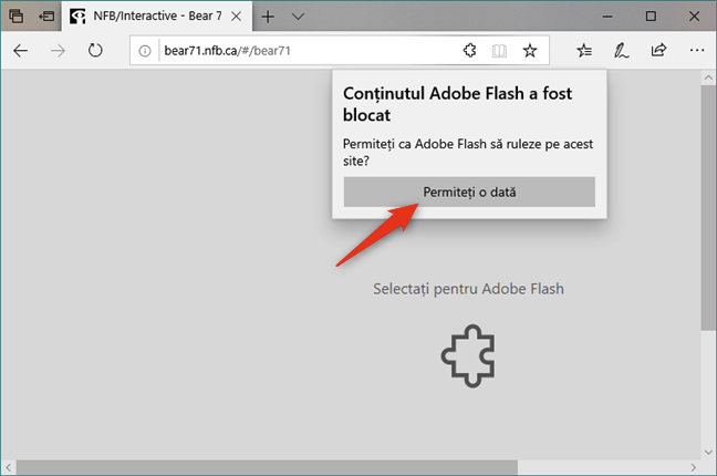 Permitere Flash în Microsoft Edge din Windows 10