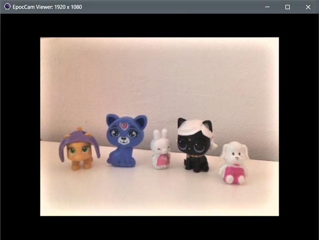 EpocCam Viewer afișând video live de pe iPhone