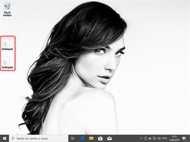 Două fișiere desktop.ini pe desktop-ul Windows 10