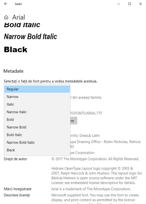 Detalii de font în setările din Windows 10