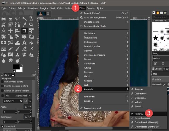 Deschiderea ferestrei Redare din GIMP
