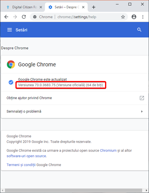 Versiunea Google Chrome afișată în Windows