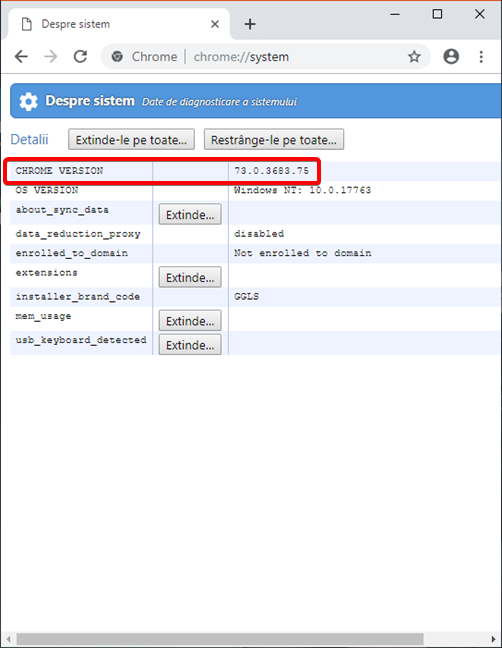 Versiunea de Google Chrome în pagina Despre sistem