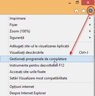 Internet Explorer, add-ons, bare de unelte, extensii, motoare de cautare, acceleratoare, programe de completare