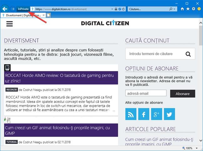 Pictograma pentru navigare InPrivate în Internet Explorer