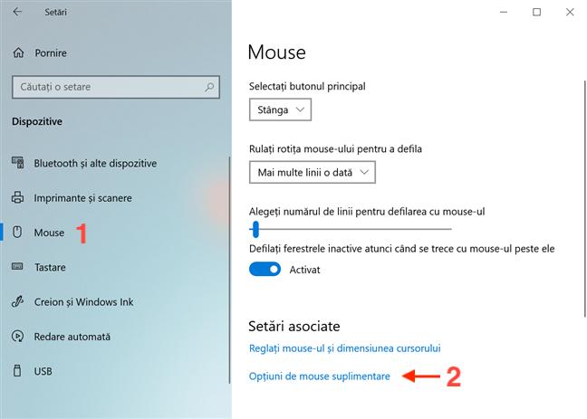 Apasă pe Opțiuni de mouse suplimentare