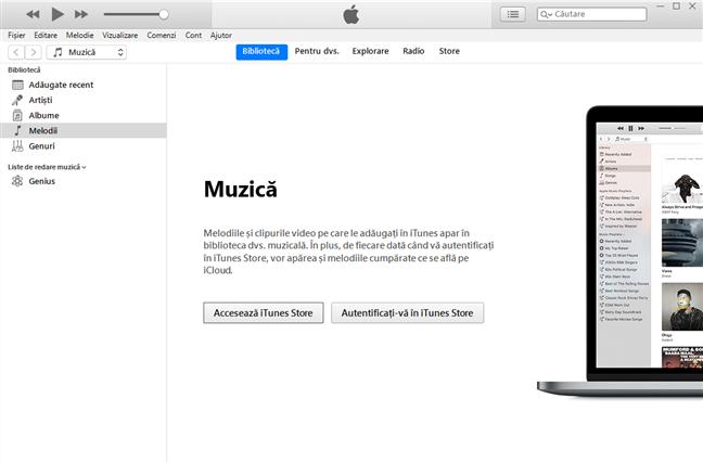 Aplicația iTunes pentru Windows 10