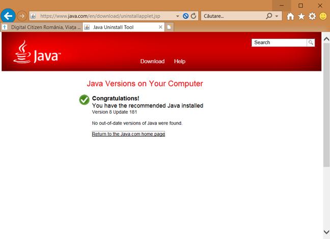 Java în Internet Explorer