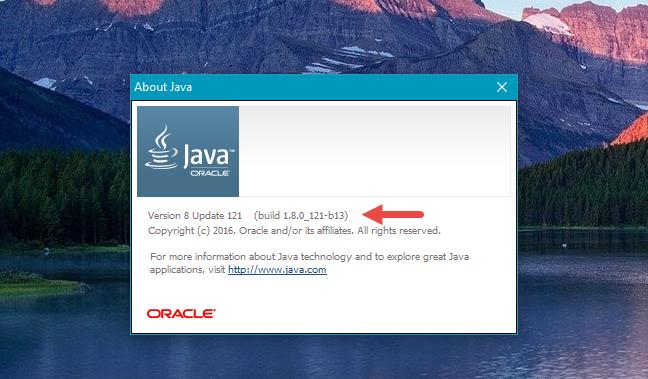 Java, versiune