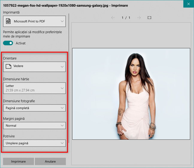 Personalizarea fișierului PDF