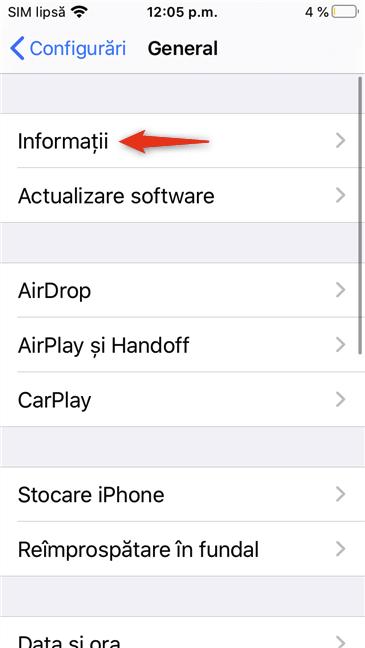 Intrarea Informații din setările Generale ale unui iPhone