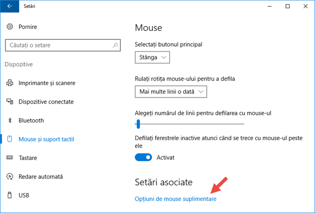 Mouse, indicatori, Windows