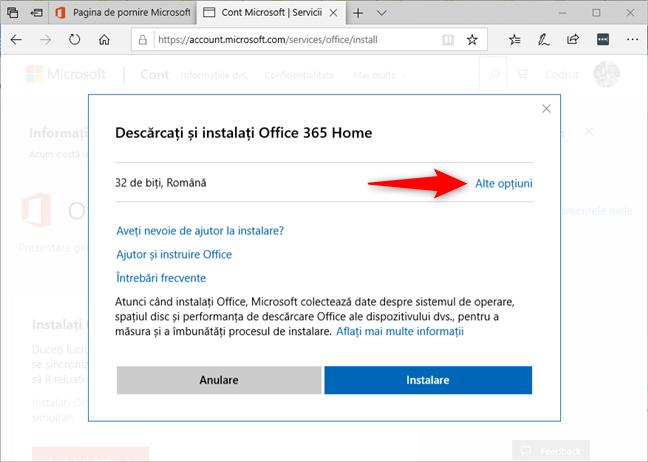 Alegerea altor opțiuni în locul opțiunii standard Office 365 pe 32 de biți