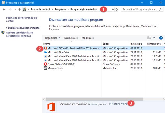 Versiunea de produs a Microsoft Office, în Panoul de Control