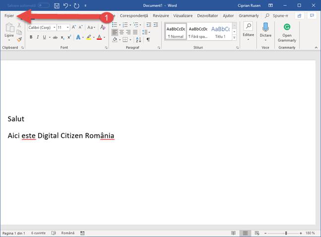 Fila Fișier în Microsoft Word