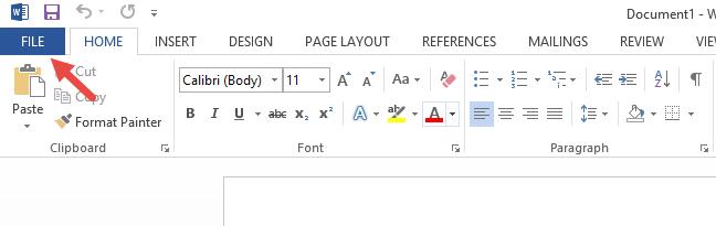Fila Fișier (File) din Microsoft Word 2013