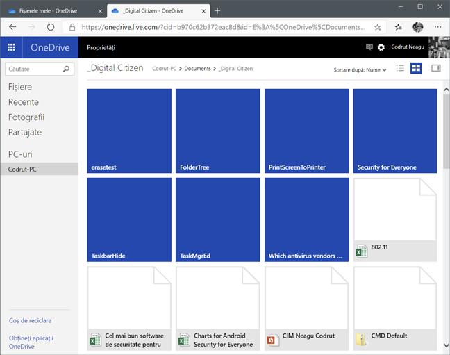 Facilitatea de preluare a fișierelor marchează folderele cu dale albastre și fișierele cu pictograme
