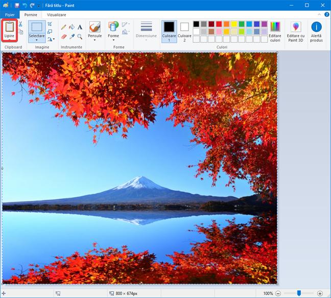 Lipește o imagine în Paint