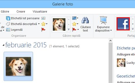 Windows, Galerie Foto, incarca, poze, Facebook