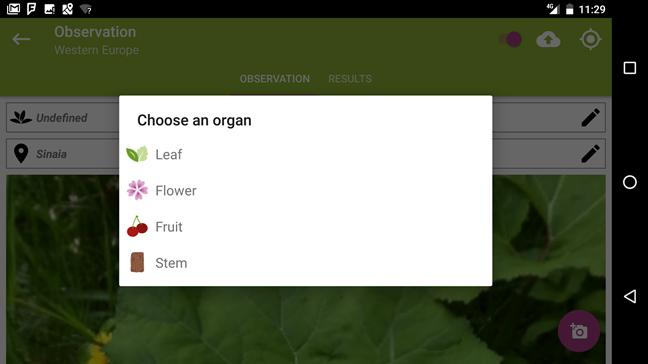 Pl@ntNet, PlantNet Plant Identification, Android