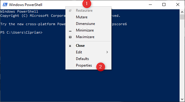 Mergi la PowerShell Properties