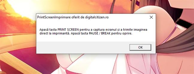 Apasă PRINT SCREEN pentru a captura ecranul și a trimite imaginea la imprimantă