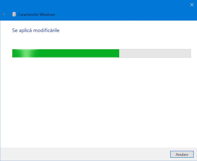 Așteaptă în timp ce Windows aplică modificările