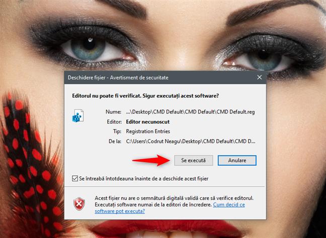 Executarea fișierului CMD Default.reg