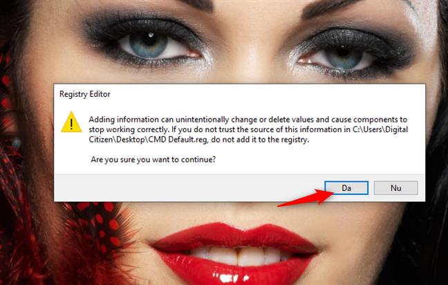 Registry Editor te întreabă dacă vrei să adaugi noua informație în Registru
