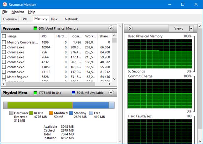 Fila Memory (memorie) în Resource Monitor