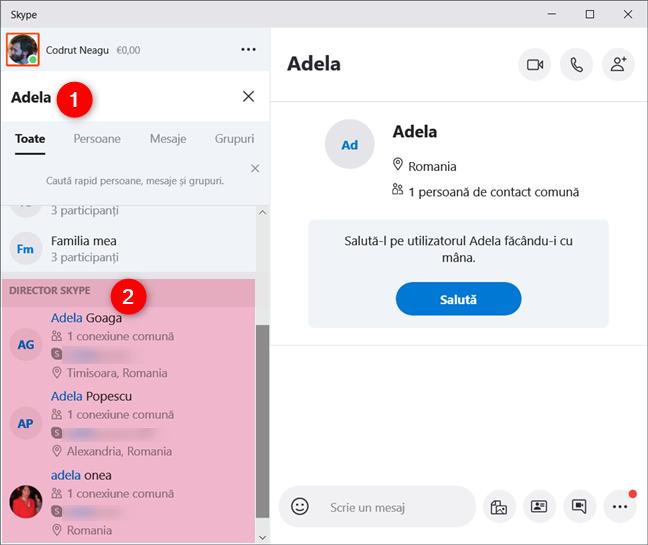 Director Skype afișează persoanele care nu fac parte din lista ta de contacte