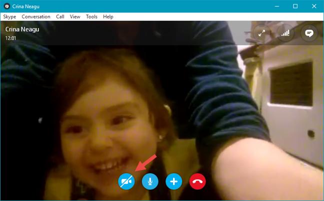 Skype, webcam