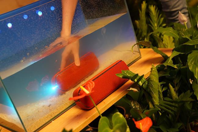 Boxă portabilă Sony SRS-XB22 testată la scufundarea în apă