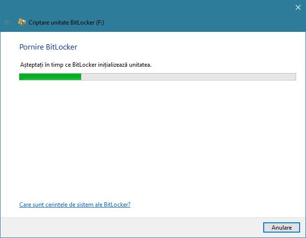 Expertul Criptare unitate BitLocker din Windows 10