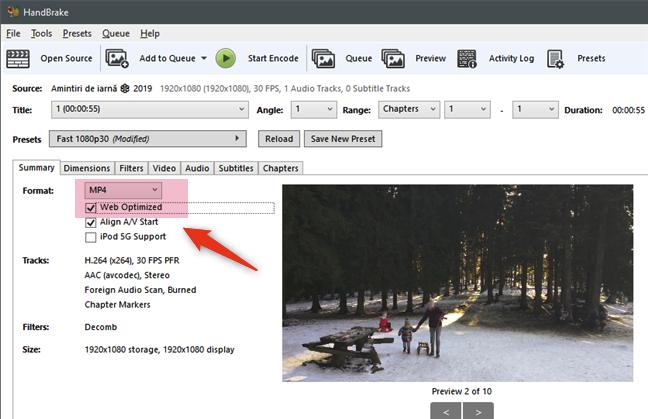 Selectarea formatului MP4 Web Optimized