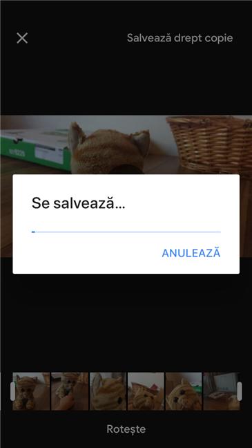 Google Foto salvează clipul video