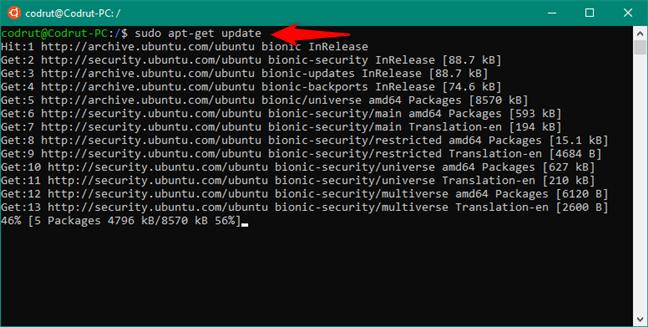 Comanda SUDO APT-GET UPDATE pentru a prelua listele actualizate de pachete software