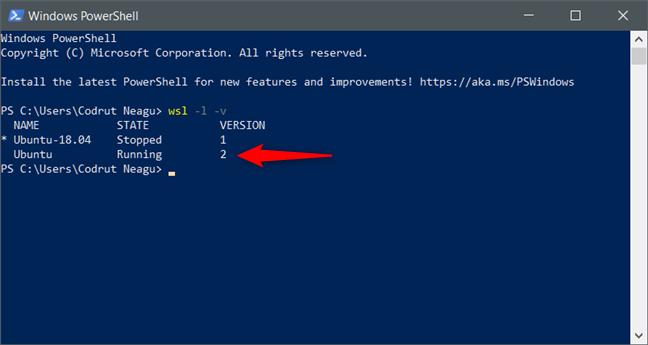 Subsistem Windows pentru Linux (WSL) versiunea 2