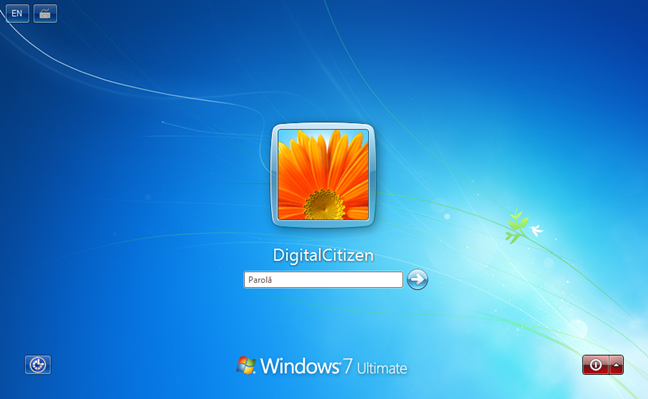 Windows, versiune, winver