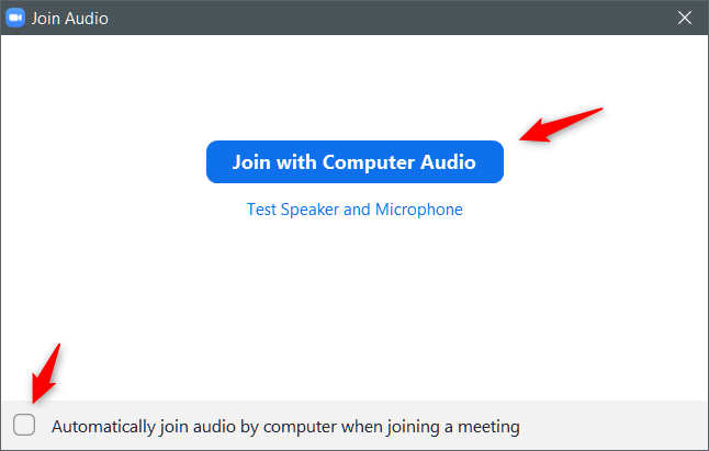 Zoom Meeting: Join with Computer Audio