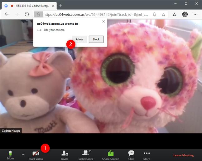 Se permite browserului să utilizeze camera web