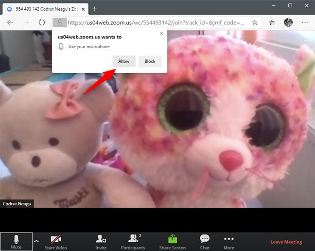 Se permite utilizarea microfonului de către browser